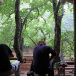 梅雨空のツリーハウス作業 6月19日