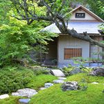 KBS京都 甦る日本一窓の多い茶室「擁翠亭」