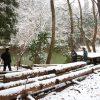 夏の木匠塾の続き@京北合併記念の森−2 2月14日