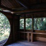 京北木匠塾2019 ツリーハウスチーム−5 屋根と壁 8月26日