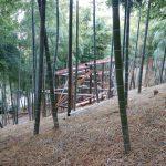 竹林小屋−11 垂木を仕込みました 12月9日