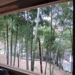 竹林小屋建設−20  最後の土壁塗り  5月4日&6日