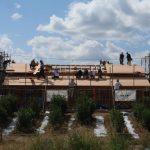 宇治茶園小屋建設−19 野地板を打つ  10月1日